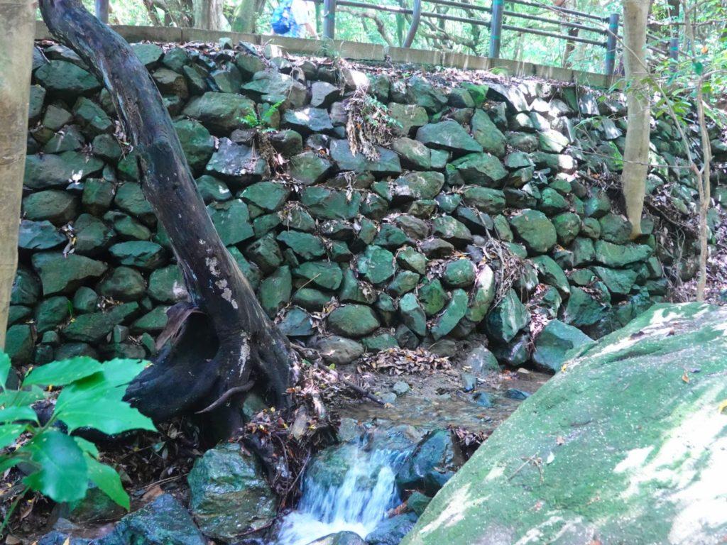 皿倉山の小川