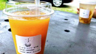 国東半島のみかんジュースと手作りジンジャーエール