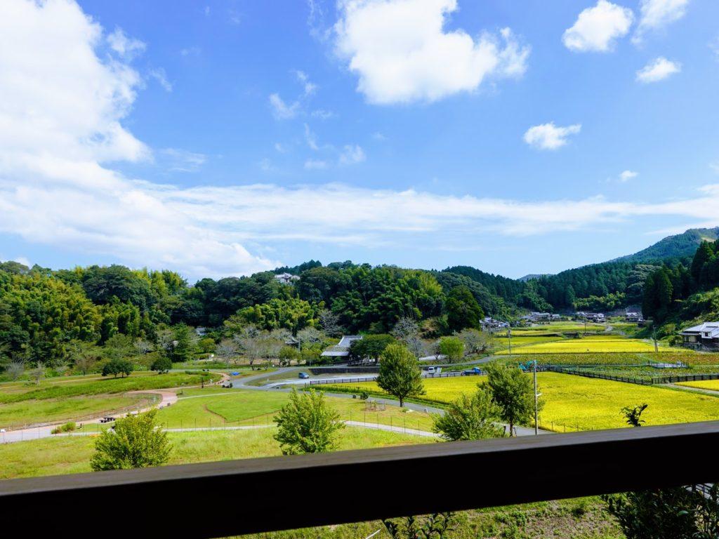 臼杵石仏から見える景色