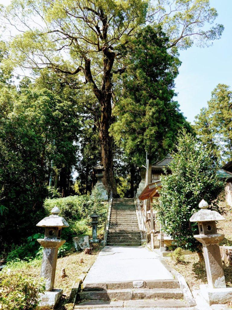 臼杵神社内