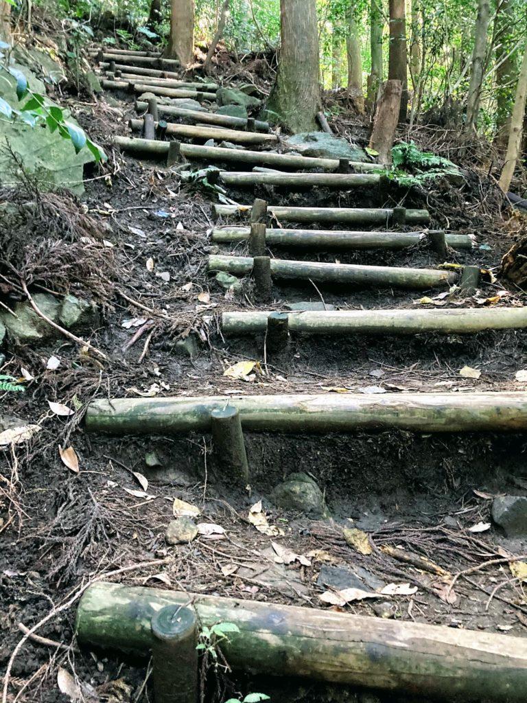 煌彩の森コース 階段も結構あります