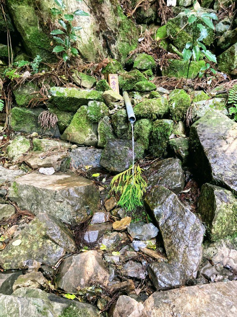煌彩の森コース途中の皿倉の泉 飲めました