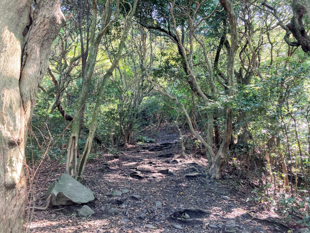煌彩の森コース 鳥の声を聴きながら