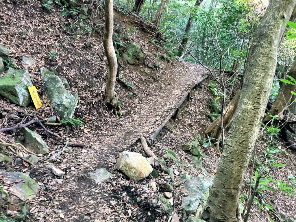 煌彩の森コース あと少し