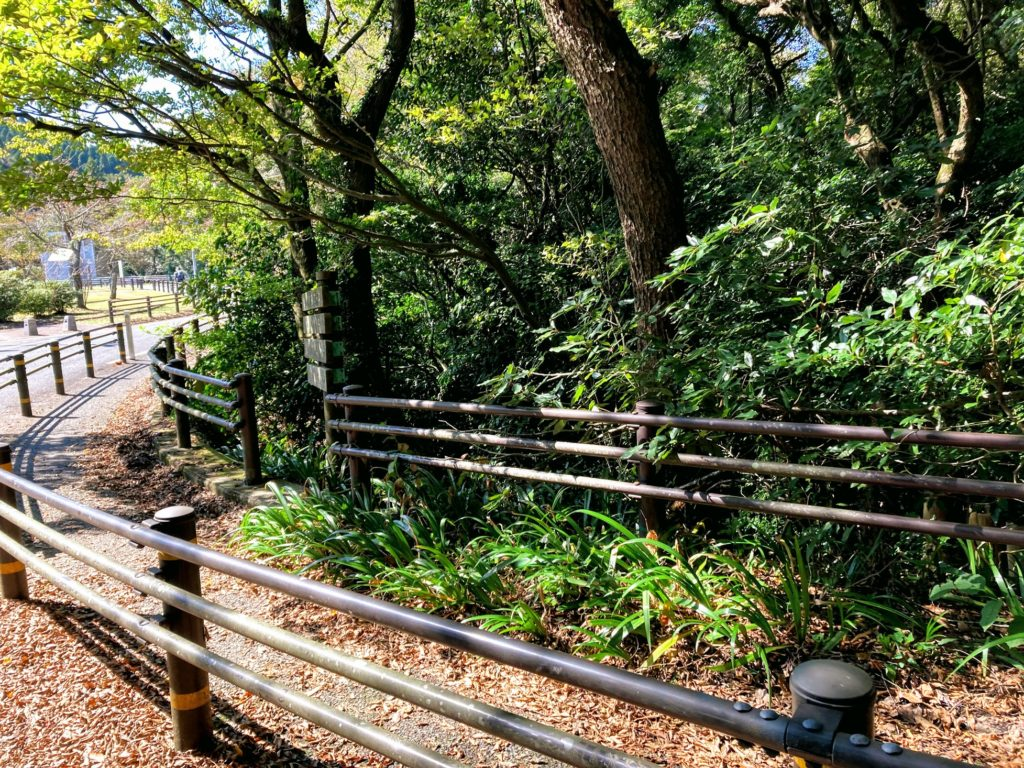 煌彩の森コース 終了