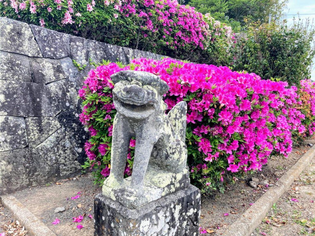 福岡県上毛町の吉富神社の狛犬とつつじ